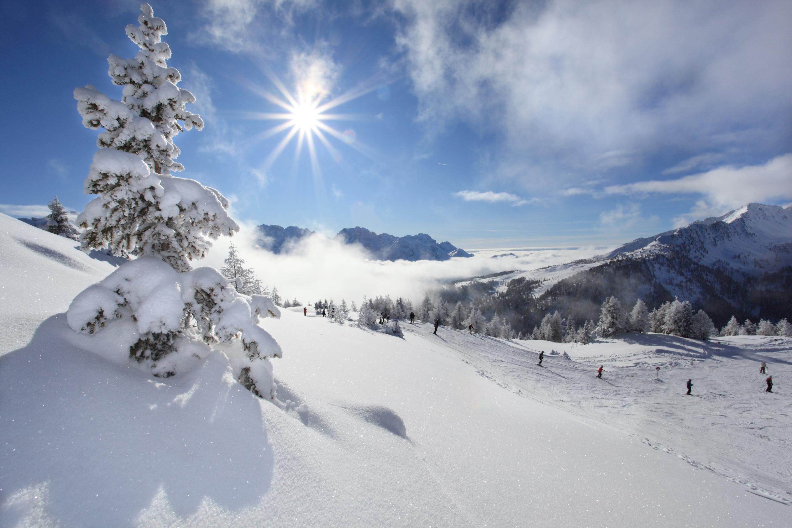 Skidresa Val di Sole - Dimaro, Madonna di Campiglio, Folgarida / Marivella